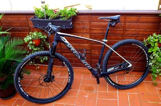 Specialized Stumpjumper Elite 29 Carbon