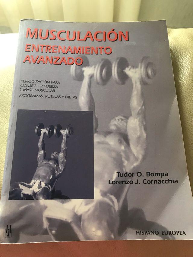 Musculación entrenamiento avanzado