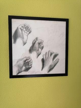 Dibujos de anatomía de manos dibujadas