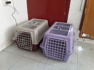 Transportines perros y gatos.