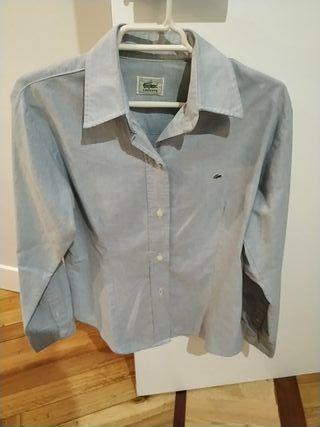 Camisa Lacoste entallada azul chica