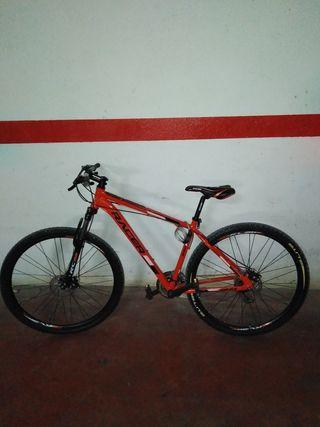 Bici Racer 290 FD
