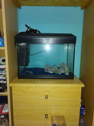 2 acuarios con todo el kit y accesorios completos