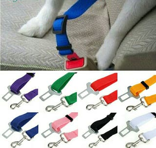 cinturón seguridad mascotas