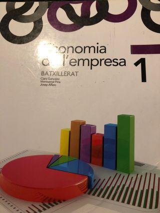 Economía de l'empresa 1 (1 de bachillerato)