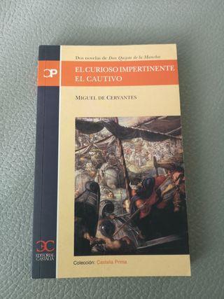 El curioso impertinente - Miguel de Cervantes