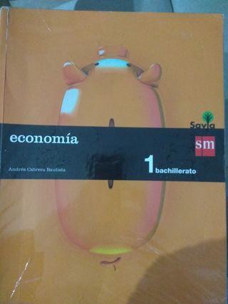 Libro economia sm