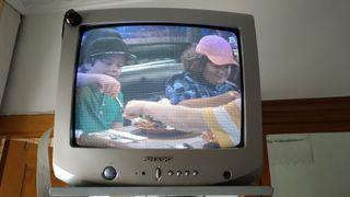 "TV 17"""