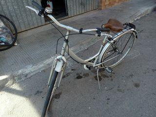 bici bh bolero