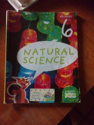ciencias naturales en inglés de 6 primaria