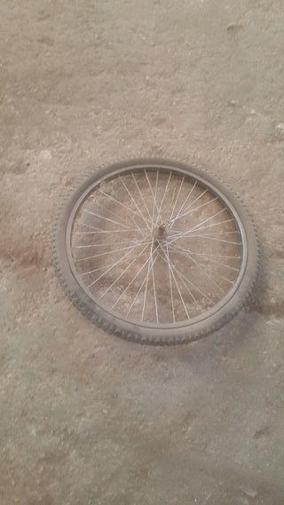 rueda y cubierta 24
