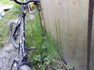 Bicicleta de trial monty 219