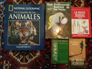 Mente Humana - Enciclopedia Peces - DVD leones