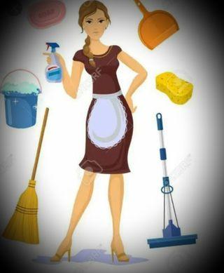 limpieza por horas !!