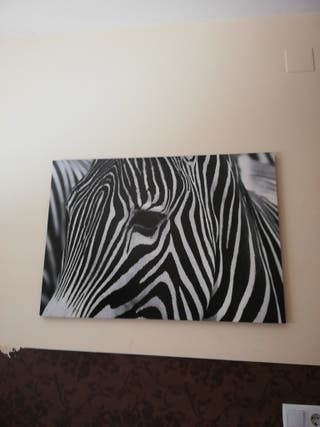 cuadro zebra