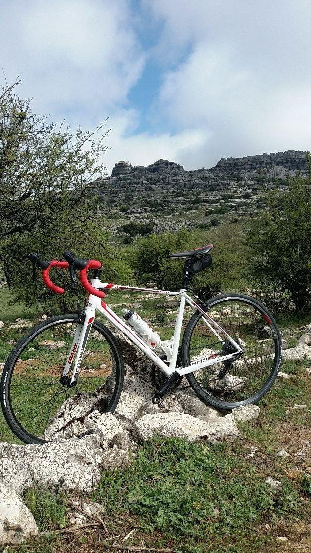 Bici de carretera Giant