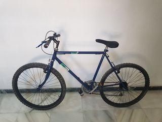 bicicleta bh montaña