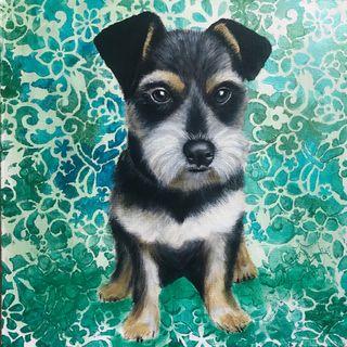 Cuadro personalizado perro fondo verdes