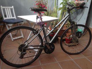 Bicicleta Trek Alpha 7100