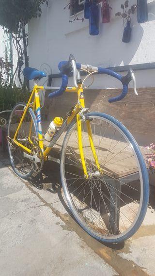 Bicicleta carretera Zeus económica