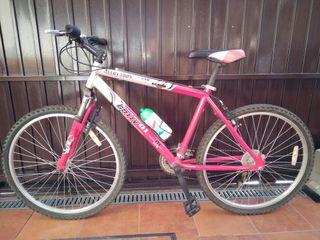 Bicleta de montaña