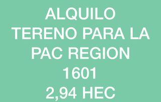 ALQUILO TERRENO DE LA REGION 1601