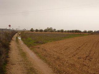 Parcela en venta en Tarazona de la Mancha