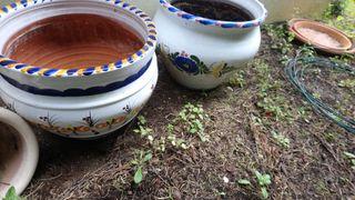 Maceteros de cerámica grandes