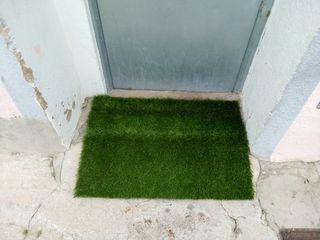 alfombra de césped