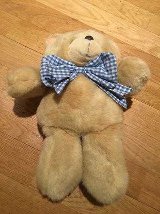 Peluche Teddy Bear Inglés