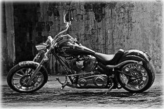 Harley-davidson BIG DOG MASTIFF