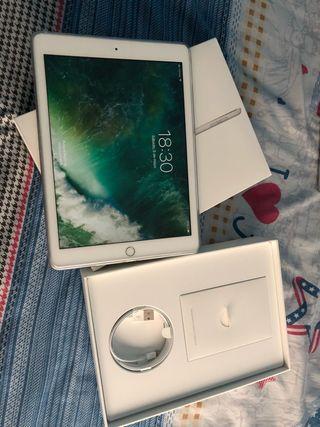 iPad wifi celular