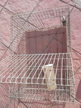 jaulas (venta de jaulas por cierre de instalación)