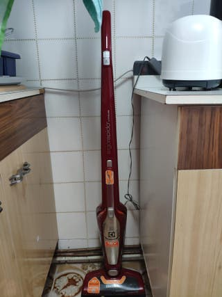 aspiradora Electrolux ZB3012