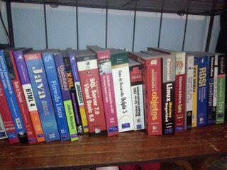 Lote libros informática