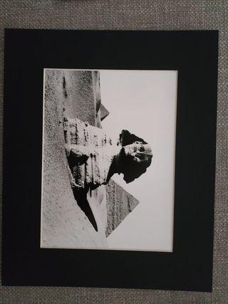 Fotos Lehnert & Landrock 40x50-REBAJADAS