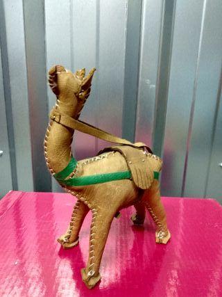Camello de cuero