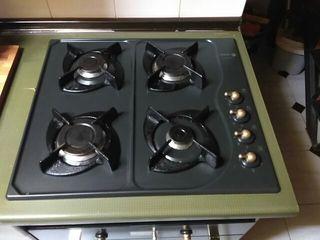 horno y placa Fagor innovation