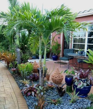 Mantenimiento de jardines..