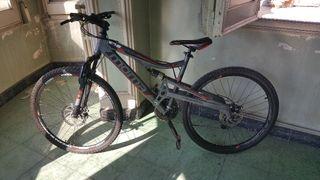 bicicleta equino x