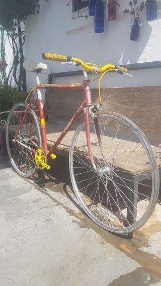 Bicicleta carretera urbana económica