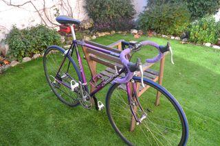 Bici Orbea Sierra Nevada