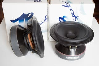 Altavoces Tang Band W6-1721
