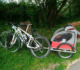 Remolque bici