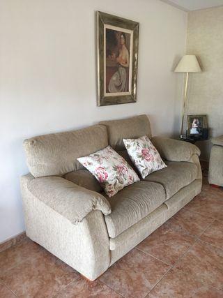 Sofas de 2 y 3 plazas (abatibles)