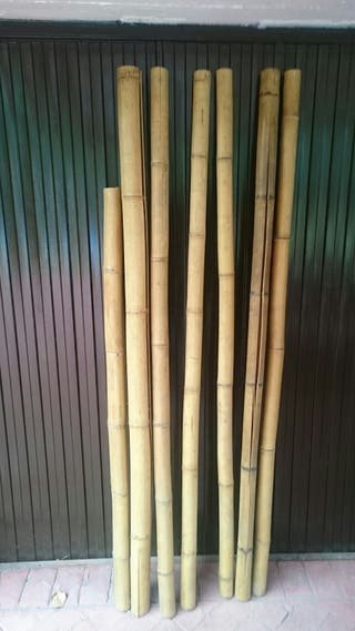 Cañas de bambú natural