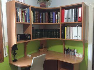 Escriptorio, estanteria