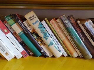 novelas de diferentes autores