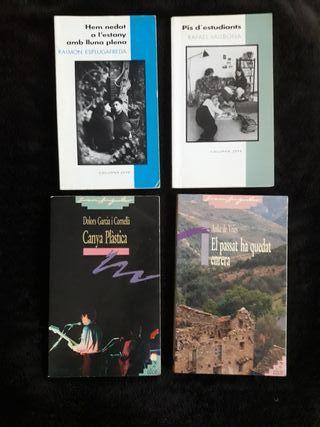 Novela en catalán