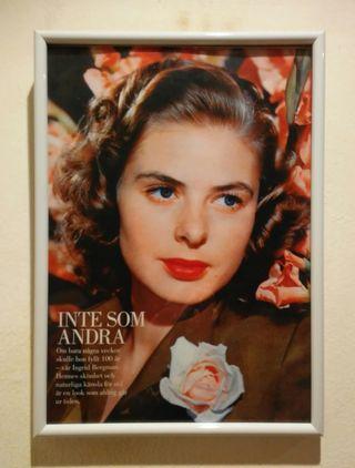 Cuadro Decorativo Ingrid Bergman Actriz Cine